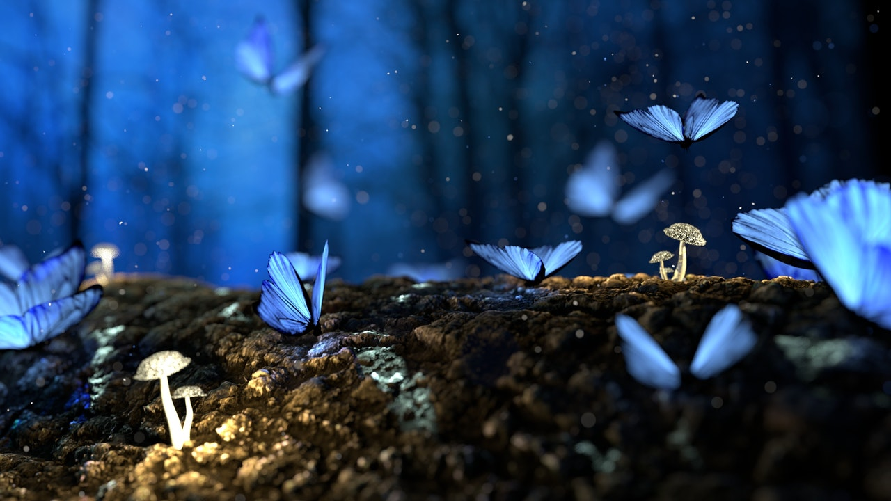A feeling of butterflies... Does hypnotherapy work for Anxiety and Panic attacks? Hypnotherapy in Victoria BC and Online